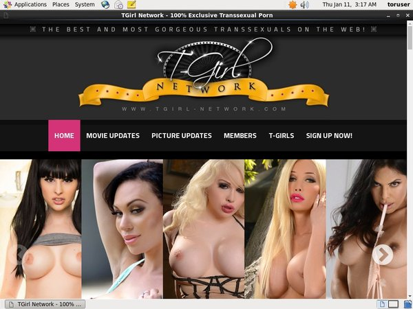 Free Tgirlnetwork Accounts And Passwords